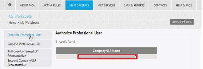 MCA-Portal-Authorize-Professional-User