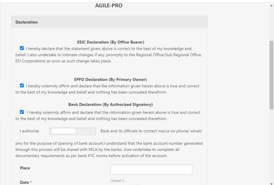 agile declaration